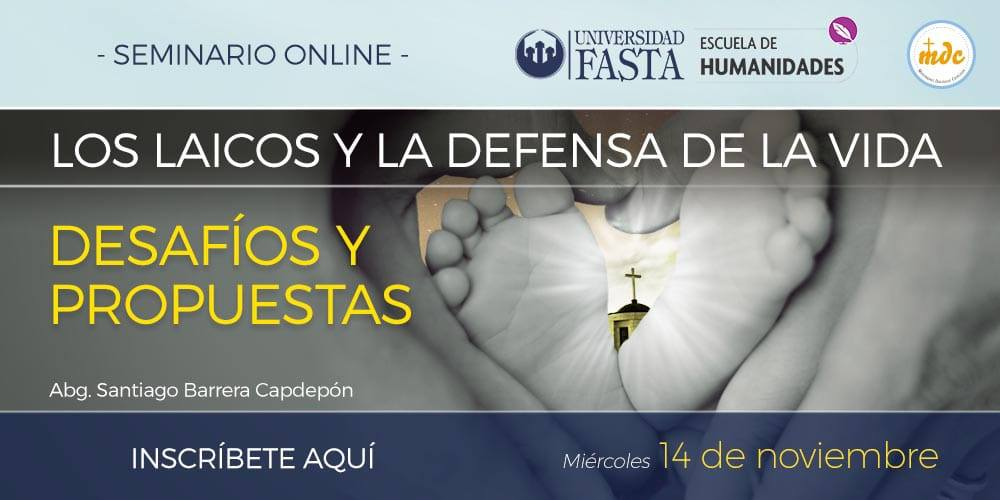 """Webinar """"Los Laicos y la Defensa de la Vida. Desafíos y Propuestas"""""""