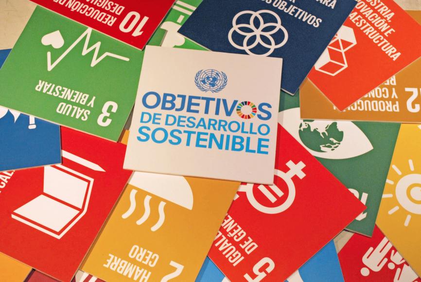 WEBINARIO - Los Objetivos de Desarrollo Sostenible: pensar globalmente, actuar localmente para un ambiente mejor