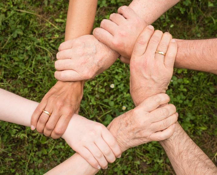 CURSO ONLINE - Voluntariado en las Organizaciones Sin Fines de Lucro